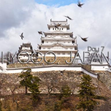 Hyogo Japan Himeji Castle