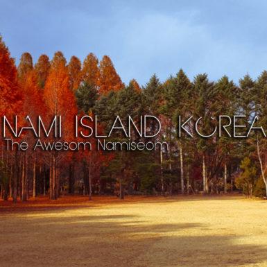 Nami Island Seoul Korea