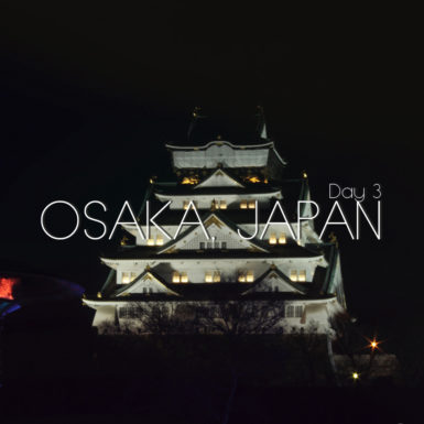 Osaka Castle Japan at night